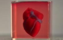 Mini-Herz aus dem 3D-Drucker