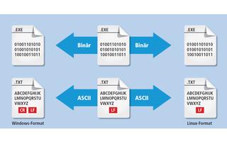 Zum Übertragen von Dateien sieht der FTP-Standard zwei Transfermodi vor: Binär und ASCII.