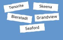 Die fünf Namen der neuen Fonts auf blauem Hintergrund