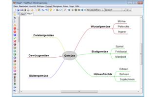 Freemind erstellt Mindmaps-Karten mit Schlagwörtern und Bildern zu einem Thema. Die Knotenpunkte lassen sich mit Symbolen versehen und farbig anpassen.