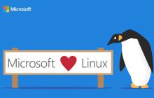 Microsoft flirtet mit Linux und Open Source