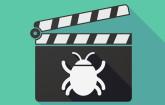 Bug Video